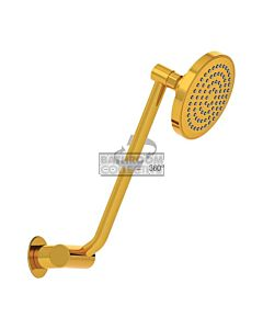 Conserv - Streamjet 100mm Shower Rose & Upswept Arm GOLD