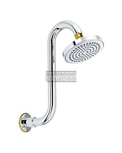 Conserv - Streamjet XL 130mm Shower Rose & Swan Neck Arm CHROME/GOLD