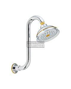Conserv - Paddington/Swan Neck Arm Shower CHROME/GOLD