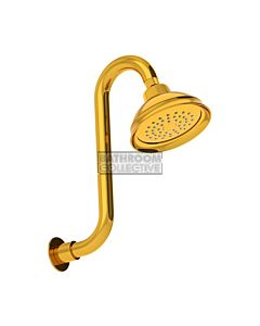 Conserv - Paddington/Swan Neck Arm Shower GOLD