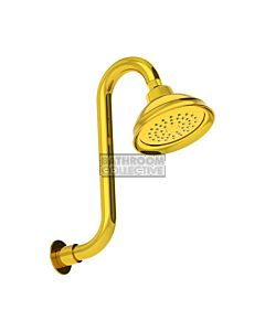 Conserv - Paddington/Swan Neck Arm Shower POLISHED BRASS