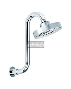 Conserv - Stamford Shower Head with Swan Neck Arm