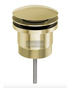 Phoenix Tapware - 40mm Pop Up Universal Waste Brushed Gold